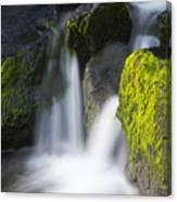 Twin Cascades Canvas Print