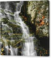 Twin Falls - Nc Canvas Print