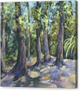 Twin Falls Sentinals Canvas Print