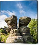 Twin Rocks At Brimham Canvas Print