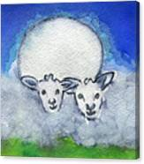 Twin Sheep Canvas Print