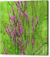 Twisty Flowers Canvas Print