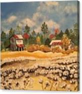 Two Barns Canvas Print