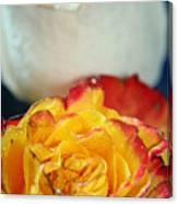 Two Beautiful Roses Canvas Print