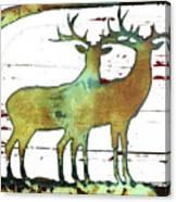 Two Bucks 2 Canvas Print