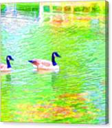 Two Canadian Geese In The Water Canvas Print