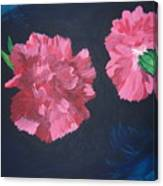 Two Carnations Canvas Print