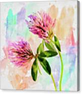 Two Clover Flowers With Pastel Shades. Canvas Print