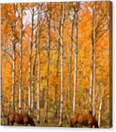 Two Colorado High Country Autumn Horses Canvas Print
