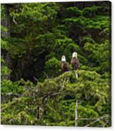 Two Eagles Perched Painterly Canvas Print