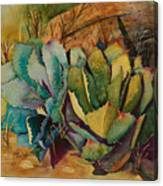 Two Fat Agaves 300 Lb Canvas Print