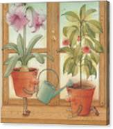 Two Flowerpots Canvas Print