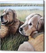 Two Golden Retriever Canvas Print