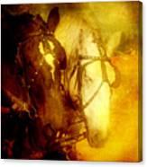Two Horsepower Canvas Print