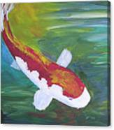 Two Koi And Water Lily Canvas Print