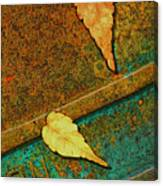 Two Leaves Or Not Two Leaves Canvas Print