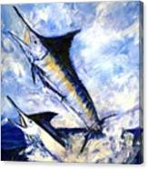 Two Marlin A Blue And A Striper Canvas Print