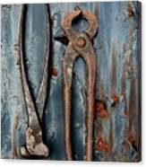 Two Old Rusty Pliers Canvas Print