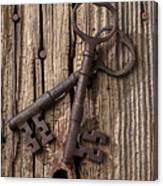 Two Old Skeletons Keys Canvas Print
