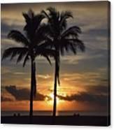 Two Palms At Dawn 18222 Canvas Print