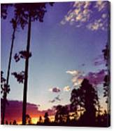 Two Pines Sunset Canvas Print