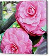 Two Pink Camellias - Digital Art Canvas Print