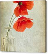 Two Poppies In A Glass Vase Canvas Print