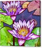 Two Purple Lotus Flower Canvas Print