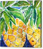 Two Purple Pineapples Canvas Print