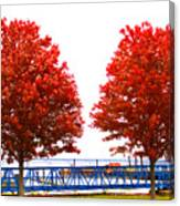 Two Red Trees Canvas Print