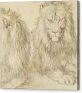 Two Seated Lions Canvas Print