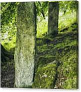 Two Standing Stones Canvas Print