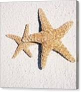 Two Starfish On The White Sand Canvas Print