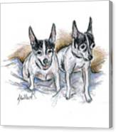 Two Toy Fox Terriers Canvas Print