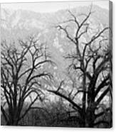 Two Trees Flatirons Boulder Colorado Canvas Print