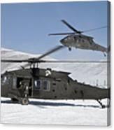 Two U.s. Army Uh-60 Black Hawk Canvas Print
