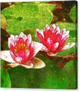 Two Waterlily Flower Canvas Print