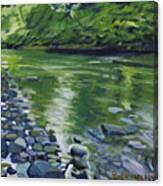 Twolick Creek Canvas Print