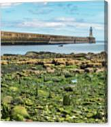 Tynemouth Pier Landscape In Color 2 Canvas Print
