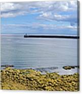 Tynemouth Piers And Lighthouses Panorama Canvas Print
