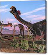 Tyrannosaurus Rex Attacking Canvas Print