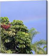 Umbrella Tree With Rainbow And Flower Canvas Print