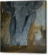 Un Elephant Ca Trompe Enormement Canvas Print