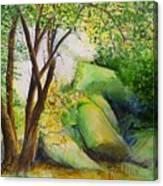Un Rincon En El Valle De Los Suenos Canvas Print