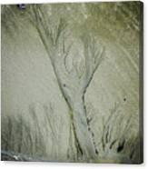 Under A Seashell Moon Canvas Print