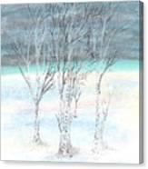 Under Northern Skies Canvas Print