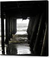 Under Santa Monica Pier Canvas Print