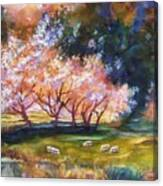 Under The Blossom Trees Sold Canvas Print