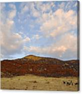Under The Colorado Sky Canvas Print
