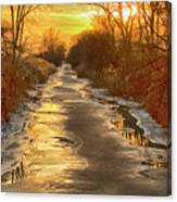 Under The Golden Sky Canvas Print
